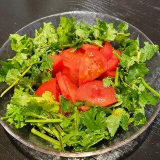 トマトとパクチーのアジアンサラダ