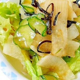 大根・きゅうり・塩昆布でサラダ