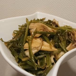 ごはんがすすむ!茎わかめと舞茸の油炒め♪