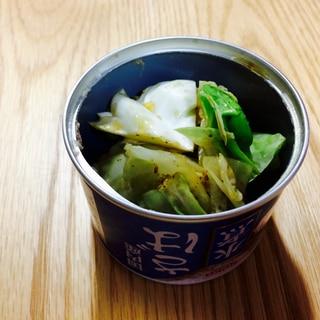 【ガサツ料理】楽ウマ貧乏飯!鯖缶汁でキャベツを食す