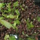 小豆と白菜のスープ煮