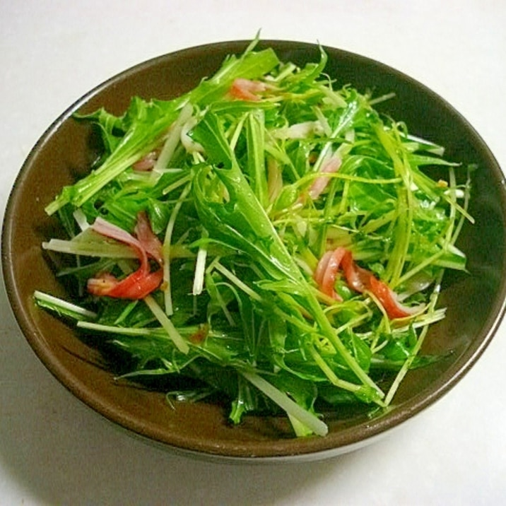 水菜と豆苗のサラダ