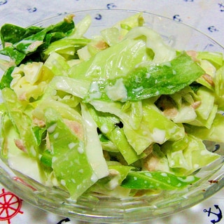 疲労回復に最適!キャベツとツナの超簡単サラダ