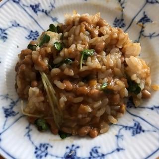 カイワレの納豆カレーチャーハン