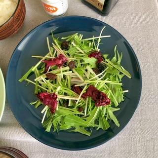 水菜とレーズンのサラダ