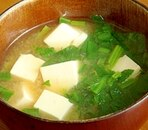 腐とほうれん草の味噌汁