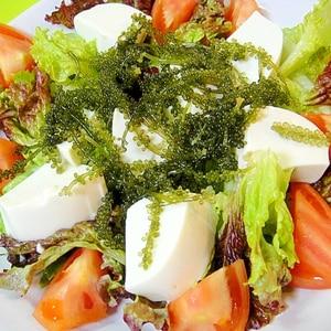 海ぶどうと豆腐のサラダ