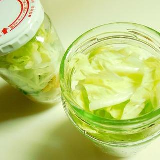 打ち豆入り白菜長芋サラダ