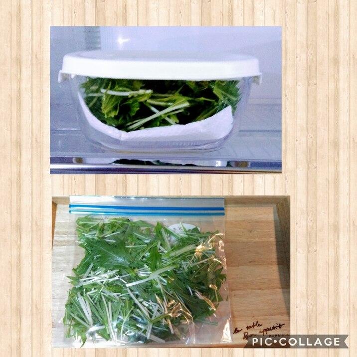 水菜 保存
