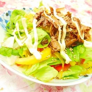 ❤秋刀魚甘露煮と彩り野菜の寿司酢サラダ❤
