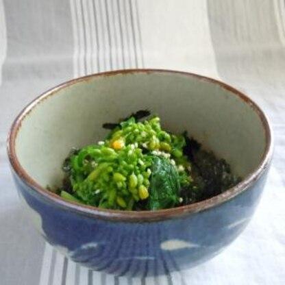 簡単 菜の花でわさびと海苔のおひたし