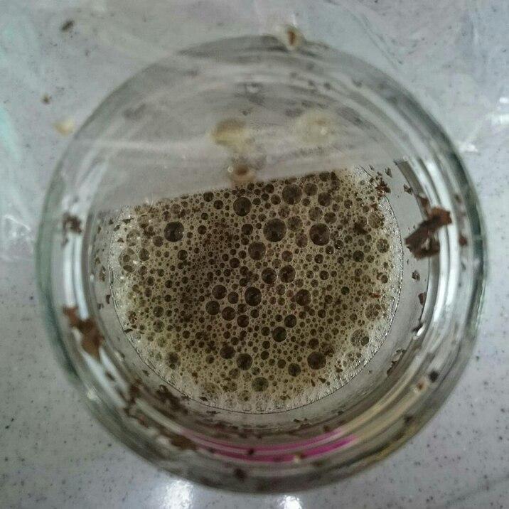 自家製酵母♪紅茶酵母液