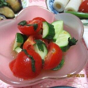 作り置きに。トマトときゅうりのしそマリネ