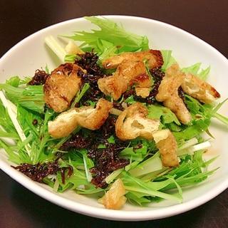 京風水菜とカリカリお揚げのちりめん山椒サラダ