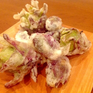 春が来た!蕗のとうの天ぷら