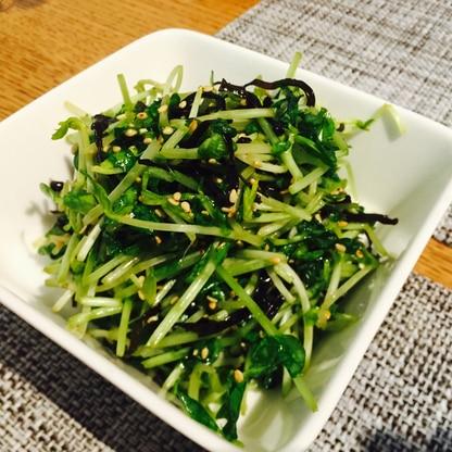 豆苗と塩昆布のサラダ