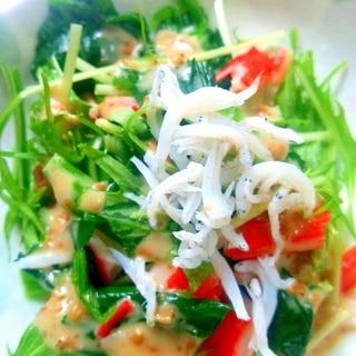 水菜とほうれん草としらすのサラダ