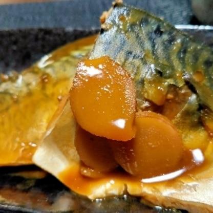 サバの味噌煮はやっぱり美味しい♪