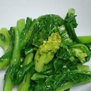 福井の伝統野菜 勝山水菜 の辛子和え