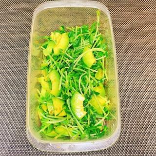 【つくおき】豆苗とアボカドのサラダ