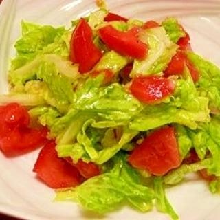 春キャベツとトマトのサラダ