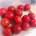 簡単副菜!トマトのポン酢和え