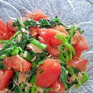緑黄野菜たっぷり☆トマトとほうれん草のサラダ
