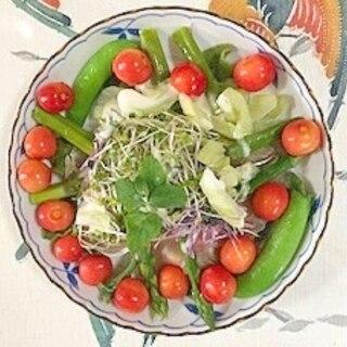 アイスプラント、生ハム、セロリ、さくらんぼのサラダ