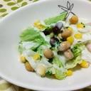 レタスとミックスビーンズのサラダ