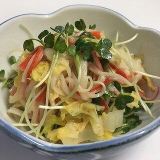 かいわれ大根と白菜のサラダ