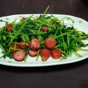 簡単レシピ『豆苗の炒め物』