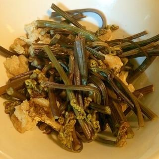 ワラビと油揚げの煮物