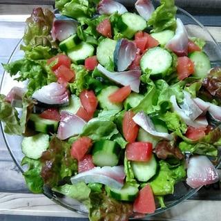 しめ鯖のカラフルサラダ