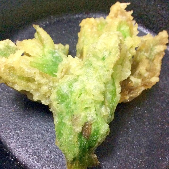 ふきのとう天ぷら塩で