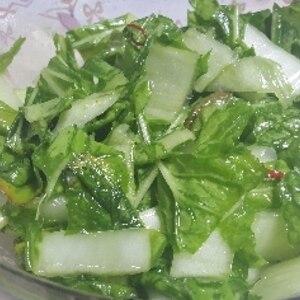 中華料理でお馴染み!白菜のラーパーツァイ