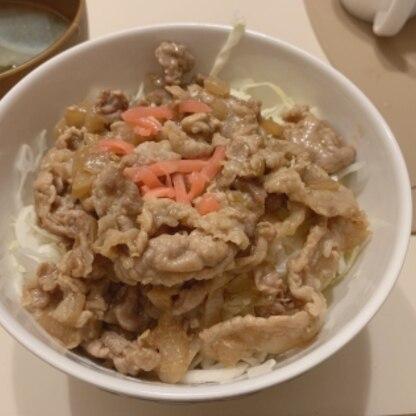 お安い薄切り肉で。玉ねぎや生姜を入れて、千切りキャベツの上にお肉をたっぷり乗せていただきました!とってもおいしかったです♪