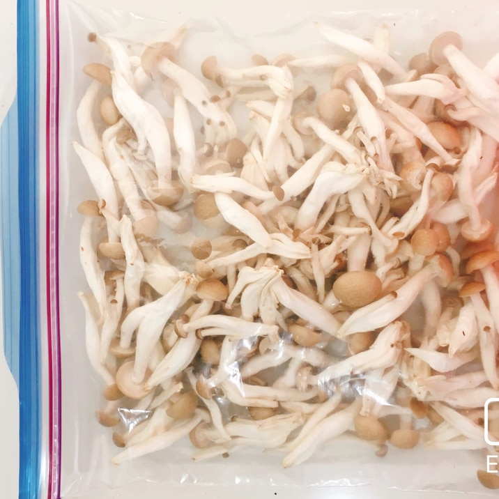 長持ち!しめじの冷凍保存方法