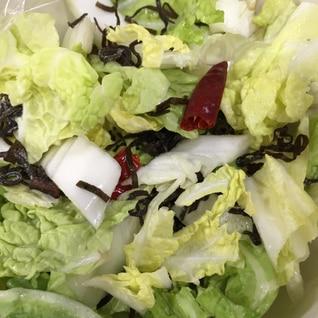 白菜漬物!切って混ぜるだけの簡単漬物