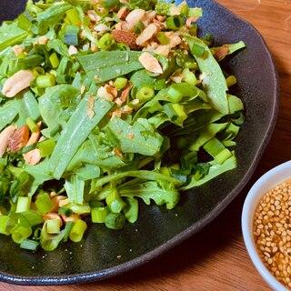 サラダ春菊とナッツのチョレギサラダ