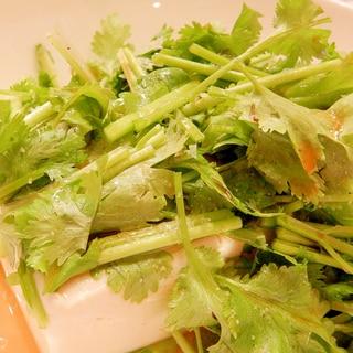 パクチー豆腐