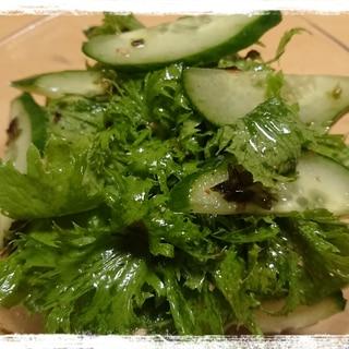 シンプル☆わさび菜のチョレギ風サラダ