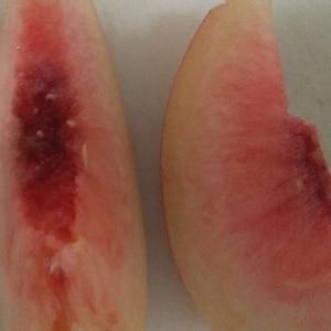 カットした桃の冷凍保存✧˖°