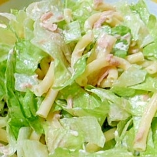 レタスとツナとマカロニのサラダ