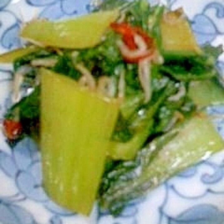 チンゲン菜のピリ辛炒め
