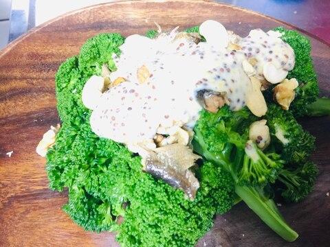 ブロッコリーとアンチョビのマスタード豆乳サラダ