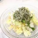 白菜大量消費◎簡単すぎるやみつきサラダ!無限レシピ