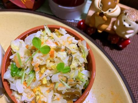 ピリ辛高菜の白菜コールスロー