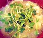 玉葱&白菜&貝割れのお味噌汁