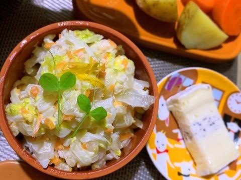 ツナと白菜の柚子コールスロー