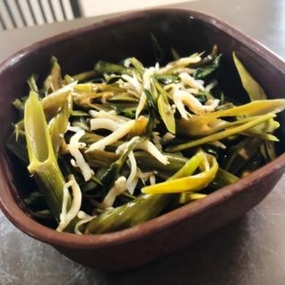 空芯菜としらす干しの炒め物